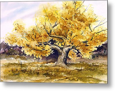 Woodward Cottonwood Metal Print