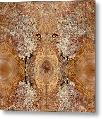 Woody 45 Metal Print by Rick Mosher