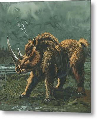 Woolly Rhinoceros Metal Print