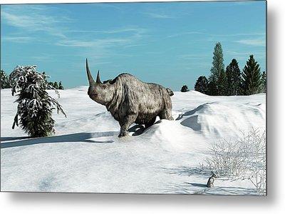 Woolly Rhinoceros Metal Print by Walter Myers