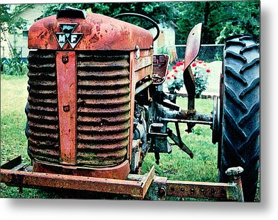 Workhorse Metal Print by Patricia Greer
