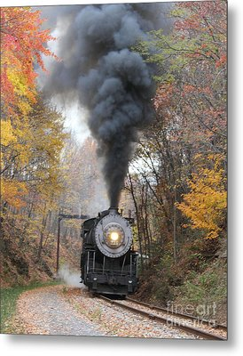 Metal Print featuring the photograph Working Hard by ELDavis Photography