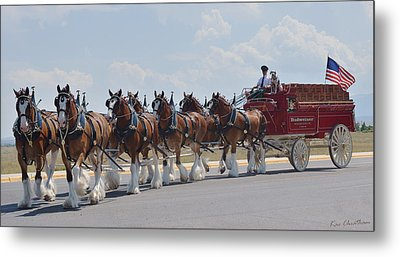 World Renown Clydesdales 2 Metal Print by Kae Cheatham