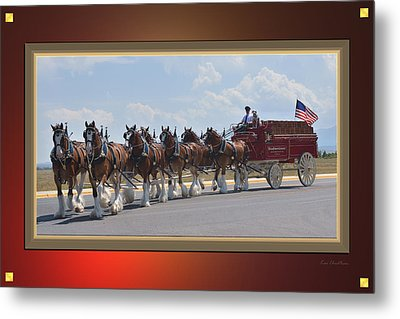 World Renown Clydesdales Metal Print