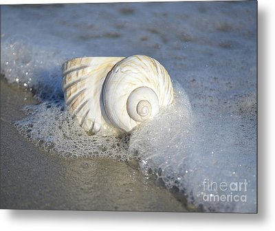 Worn By The Sea Metal Print