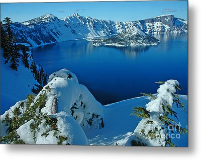 Metal Print featuring the photograph WOW by Nick  Boren