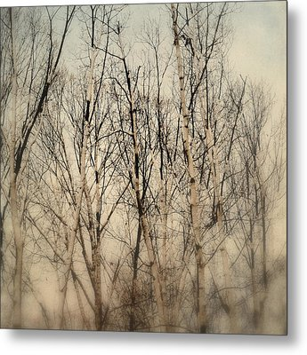 Wrapped In Snow Metal Print by Michelle Ayn Potter