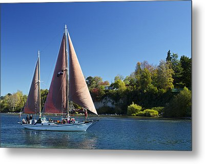 Yacht Fearless On Lake Taupo  Metal Print by Venetia Featherstone-Witty