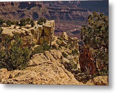 Metal Print featuring the photograph Yaki Point 3 The Grand Canyon by Bob and Nadine Johnston