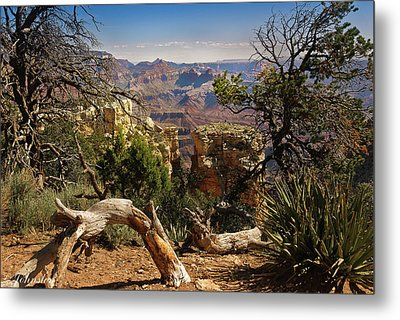 Yaki Point 4 The Grand Canyon Metal Print by Bob and Nadine Johnston