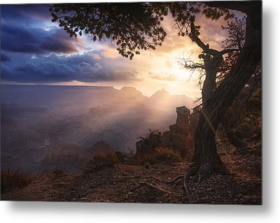 Yaki Point Metal Print by Michael Breitung