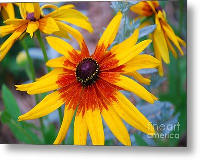 Metal Print featuring the photograph Yellow Burst by Allen Beatty