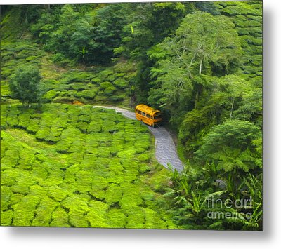 Yellow Bus Metal Print by Patricia Hofmeester