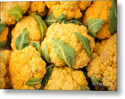 Yellow Cauliflower Metal Print by Rebecca Cozart