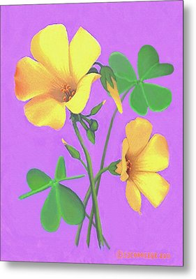 Yellow Clover Flowers Metal Print