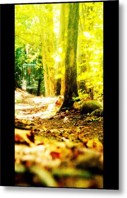 Yellow Discin Day Metal Print