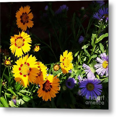 Metal Print featuring the photograph Yellow Flower by Rose Wang