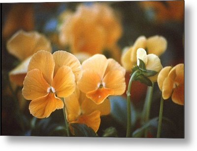 Yellow Flower Metal Print