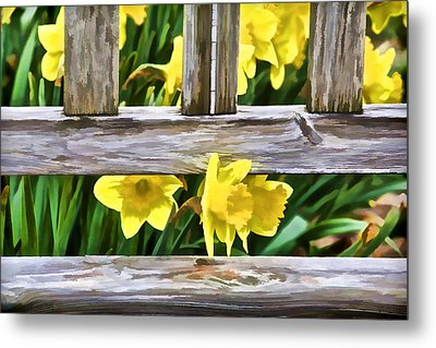 Yellow Flowers By The Bench Metal Print by David Letts
