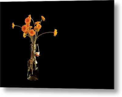 Orange Flowers On Black Background Metal Print by Don Gradner