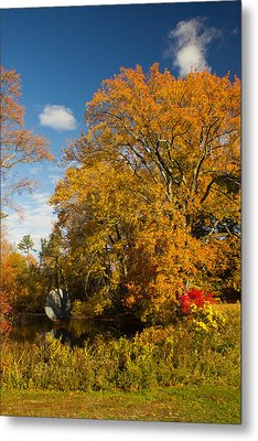 Metal Print featuring the photograph Yellow Giant by Jose Oquendo