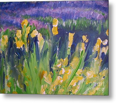 Yellow Iris Metal Print by Eric  Schiabor