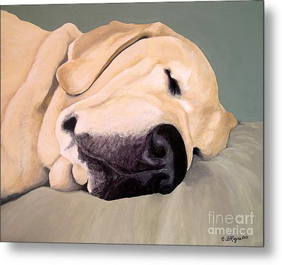 Yellow Lab - A Head Pillow Is Nice Metal Print
