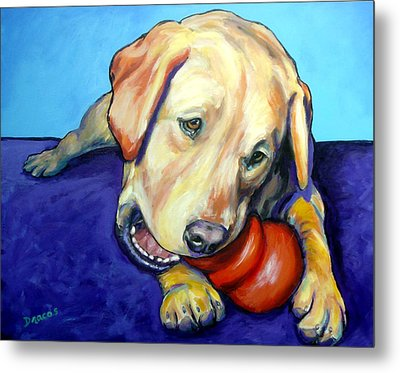 Yellow Lab With Kong Metal Print by Dottie Dracos