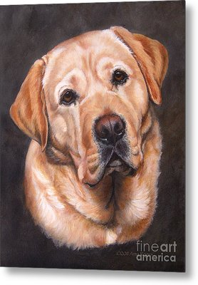 Yellow Labrador Portrait - Dark Yellow Dog Metal Print