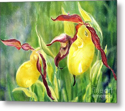 Yellow Lady Slippers Metal Print by Joan A Hamilton