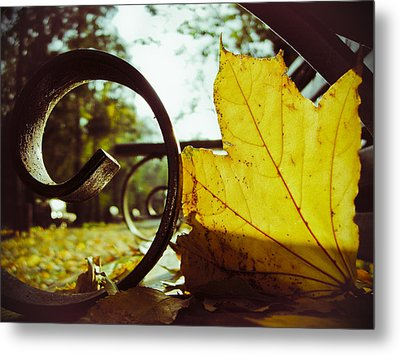 Yellow Leaf On A Bench In A Park Metal Print