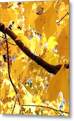 Yellow Leaves Metal Print by Valentino Visentini