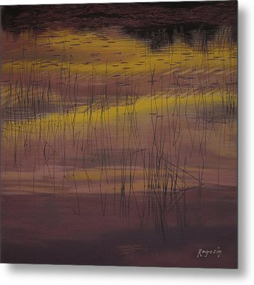 Yellow Marsh Metal Print