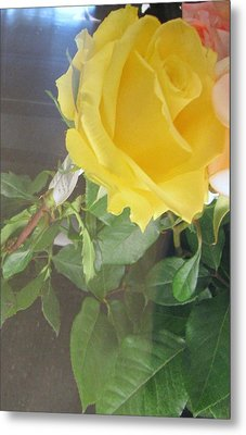 Yellow Rose- Greeting Card Metal Print