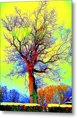 Metal Print featuring the photograph Yellow Sky by Jodie Marie Anne Richardson Traugott          aka jm-ART