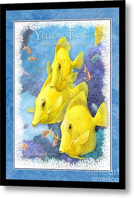Yellow Tang Metal Print