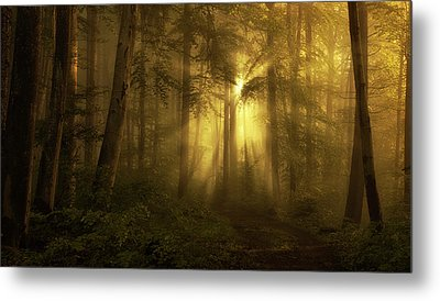 Yellow - The Bigger Picture Metal Print
