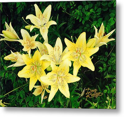 Metal Print featuring the photograph Yellow Tiger Lilies by Doug Kreuger