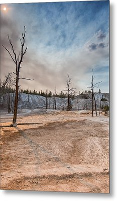 Yellowstone Desolation Metal Print by Andres Leon