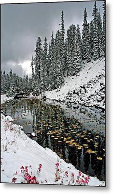 Yellowstone Early Snow Metal Print by Geraldine Alexander