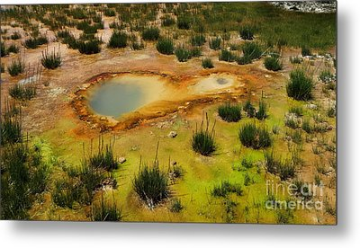 Yellowstone Hot Pool Metal Print by Ausra Huntington nee Paulauskaite