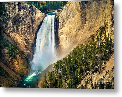 Yellowstone Lower Waterfalls Metal Print by Robert Bales