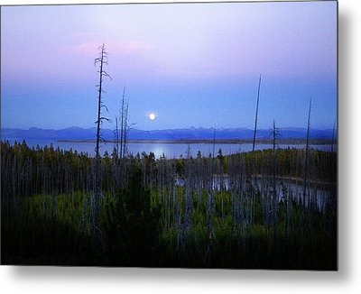 Yellowstone Moon Metal Print by Ann Lauwers