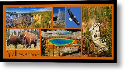 Yellowstone National Park Metal Print by Greg Norrell