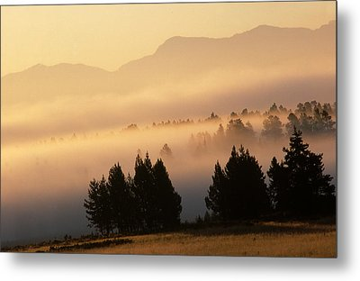 Yellowstone Sunrise Metal Print by Steve Archbold