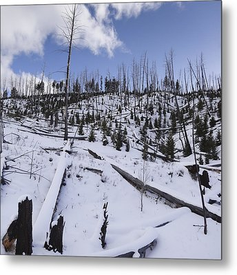 Yellowstone Winter Metal Print