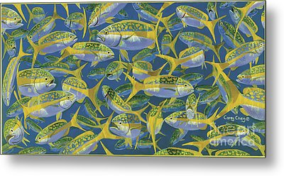 Yellowtail Frenzy In0023 Metal Print by Carey Chen