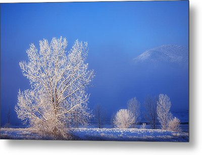 Yesterday's Blues Metal Print by Darren  White