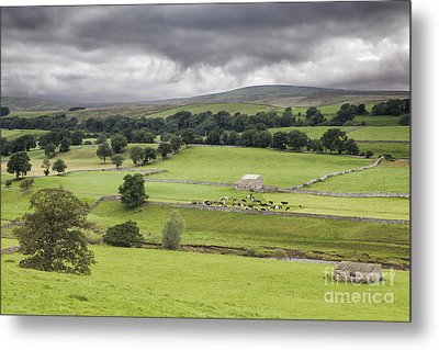 Yorkshire Dales Metal Print by Colin and Linda McKie