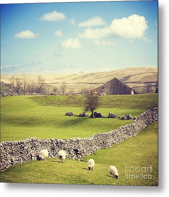 Yorkshire Dales With Dry Stone Wall Metal Print